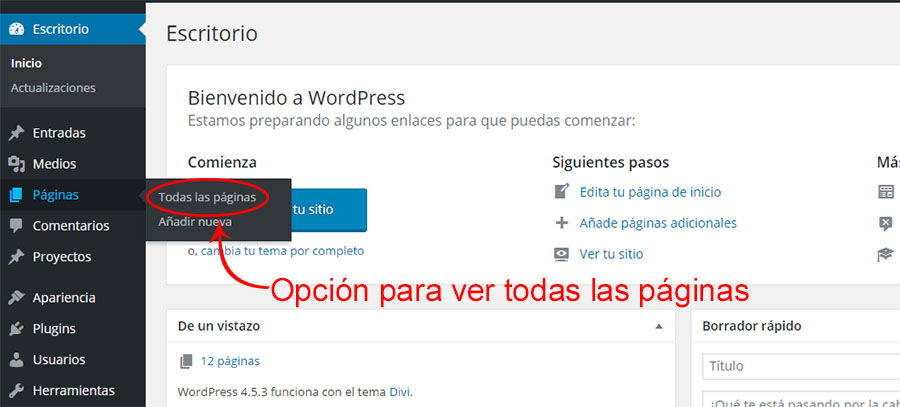 editar paginas en wordpress